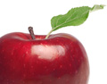 insight_apples-erp.jpg